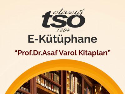 Prof.Dr. Asaf Varol Kitapları